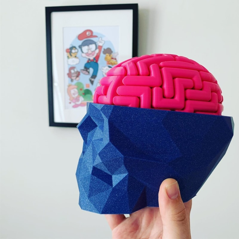 3D Printed Brains by Ronald Lokers